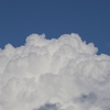 『はなびらたけ』そっくりさん 積乱雲