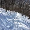 札幌の円山に登ってきた!駐車場とか登山口。