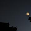 中秋の名月を愛でる法要【唐招提寺 観月讃仏会】(奈良市)