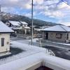 12.14 雪の朝