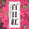 5月29日(月)江戸の空気を味わう(映画:百日紅)