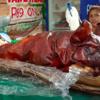これは外せない!フィリピンで食べるべき料理4選
