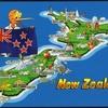 2017年のニュージーランド相場についての考察