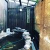 熊本県南小国ゴンドーシャロレーキャンプ場 お得な温泉・家族風呂はここで決まり!