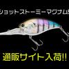 【ノリーズ】人気クランクシリーズに新サイズ!5mレンジを攻めるマグナムクランク「ショットストーミーマグナム5」通販サイト入荷!