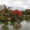 清澄庭園の櫨の紅葉