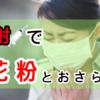 【鼻水が一瞬で治る!?】花粉症は注射で治せ!2種類の注射療法を紹介してみた。
