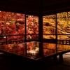 京都のおすすめ紅葉スポットと撮影テクニック 瑠璃光院