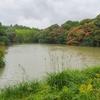樋迫池(大分県国東)