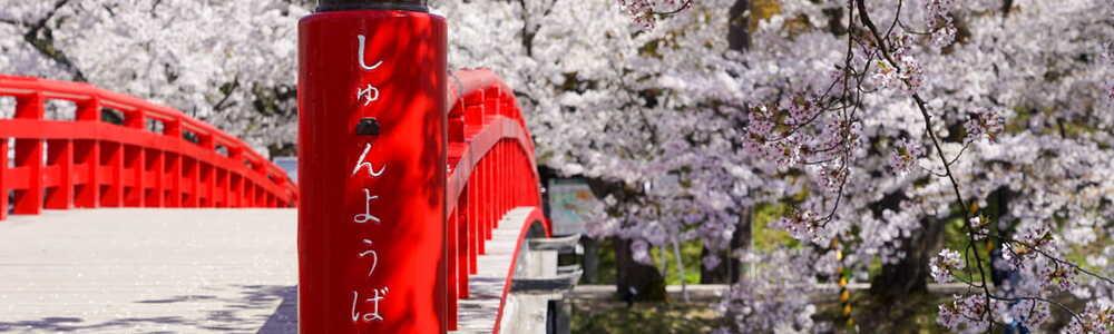 「ふらいんぐうぃっち」春の青森をロードバイクで走ってきた Part 2/3 (@青森県弘前市)