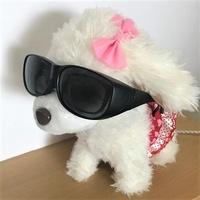 ハンターじゃないよ!ちゃんとUVカット付いてるよ!メガネユーザーのみなさん、ダイソーでバカ売れしているのがコレです!