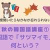 【秋の韓国語講座①】韓国語で「サツマイモ」は何という?