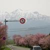日本で毎日、嘘のニュースを量産しているのはどこか?