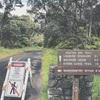 ハワイ島1泊❤️レンタカーで島半周コース