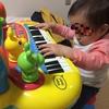 楽器に興味を持ち始めました