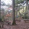 勝俣部長の「高尾登山と健康体質作り」769・・・・スポーツ新聞化粧と 呼ぼう