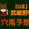 【GⅢ】 武蔵野S 結果 回顧
