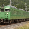 第1362列車 「 緑だらけ~抹茶色113系を更に狙う 2020・GW 草津線紀行その3 」
