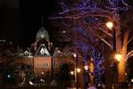 赤れんが×アカプライルミネーション2017。札幌・赤れんが庁舎とイチョウ並木のイルミネーションを楽しむ。