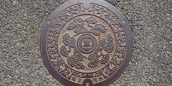 滋賀県蒲生郡竜王町のマンホール