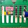 【100均楽器で音遊び】子供が喜ぶ手作りおもちゃ「壁面楽器隊!」