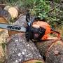 春の薪の作業は終わり