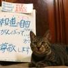 本日のポスター(2016年10月23日)