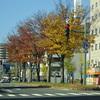 秋田市街地の初冬
