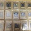 青眼の白流・真紅眼の黒竜・ブラックマジシャンの全言語カードをコンプリートしたのでご紹介。