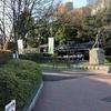 花咲く本川