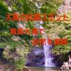 【大阪の紅葉スポット】箕面大滝で自然を満喫