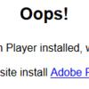 9/28 Adobe Flush Playerによる人間の分別