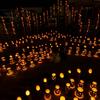 竹が織りなす光の夜「竹たのしみまくる下田」