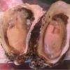 上野 真牡蠣 生2