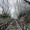 金剛山へのハイキング(その2)金剛山頂