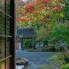京都・亀岡 - 紅葉始めの積善寺
