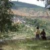 ブータン④ 「森林面積60%以下にしない」-憲法規定