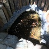 港北区に今なお伝わる「いのちの池」を訪れてみた(中編・「の」の池編)