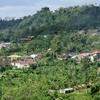 バリ島北部の風景