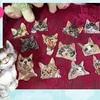 13匹の猫型ワッペン♪