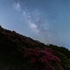 【天体撮影記 第155夜】 長崎県 長串山のクルメツツジと夏の天の川を求めて
