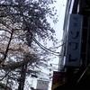 【番外編】京都まで足を伸ばして、幻想的なレトロ喫茶へ!〜喫茶ソワレ〜