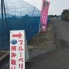 500円で無制限食べ放題のブルーベリー狩り♪ブルーベリープラザ浦和(さいたま市)子連れで楽しめるおすすめ情報