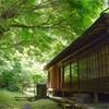 新緑の鎌倉でダントツ行きたい英勝寺。青もみじ×書院はため息モノ