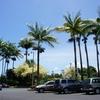車椅子ユーザーが母と2人でハワイ旅行に行ってみた(オアフ島ステイ&ハワイ島日帰り)