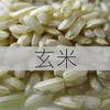私が玄米を食べない理由 <乳がんブログVol.246>