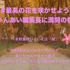 """季節外れの""""桜""""が咲き乱れても良いじゃないか。"""