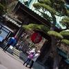 長谷寺の早春。3月を29枚の写真でふわっとお伝えする。