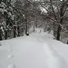 ◆'19/01/01     2019年の初・山歩き 金峯山へ②