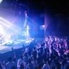 スピッツ「醒めない」DVDレビュー 10曲目:子グマ!子グマ!